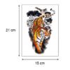 Ajutine-tätoveering-värviline-tiiger-06220-mõõdud