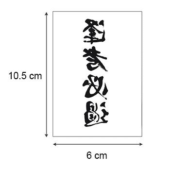 Ajutine-tattoo-hieroglüüfid-03880